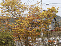 P3231013
